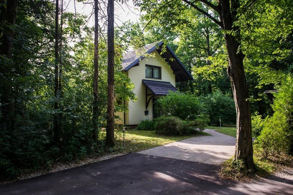 small house Kranj near Ljubljana 54923503